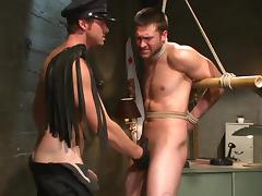 Anal BDSM with two gay stallions