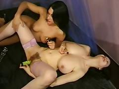 2 German girls with Hairy pussy lesbian sex