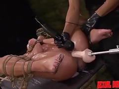 Vagina, BDSM, Cunt, Drilled, Pussy, Vibrator
