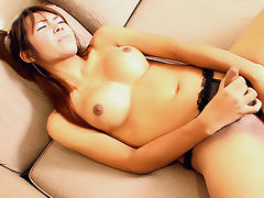 LadyboyGold Video: Busty Pigtail Dickgirl