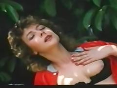 Katze Sucht Kater (1986)