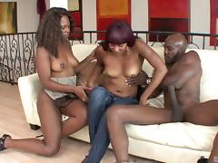 Two chocolate chicks trying the ride the biggest black dick ever