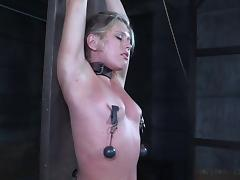 Bound, BDSM, Blonde, Bound, Pussy, Slave