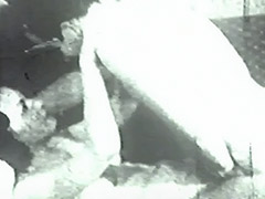 Mustached Man Fucks Cunt of Young Babe 1950 porn video