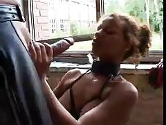 Berlin Orgy