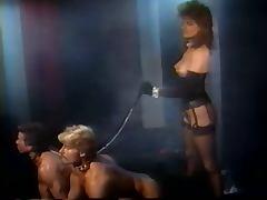 Francois Papillon Fantasy Chamber 1987