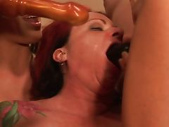 Irish Adult Tube Vids