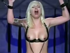 Golden Haired Cums Her Brains Out on a Sybian