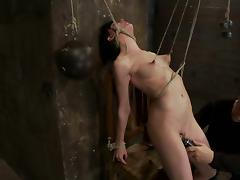 Small Boobed Elise Graves Totally Tied and Dominated for Toying