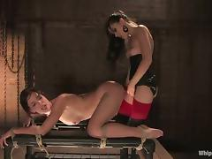 All, BDSM, Bondage, Brunette, Domination, Femdom