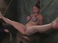All, BDSM, Tease