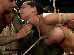 All, BDSM, Bondage, Bound, Brunette, Slave