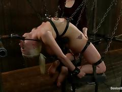 Extreme device bondage for a sassy blondie Lorelei Lee