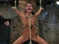 All, Adorable, Babe, BDSM, Bondage, Couple