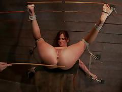 All, BDSM, Bondage, Bound, Slave, Spanking