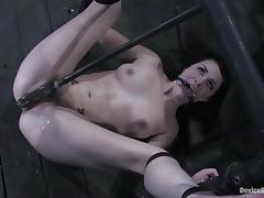 Humiliation, BDSM, Bondage, Brunette, Humiliation