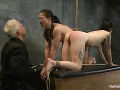 Horny brunette chicks get whipped and toyed in a basement porn video