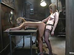 A unprincipled dominatrix toys her slave's cunt before great rosiness with a strapon porn video