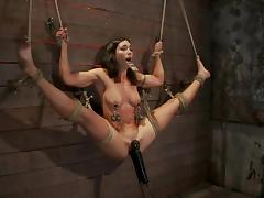 Bondage, BDSM, Bondage, Bound, Slave, Tied Up