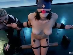All, BDSM, Bondage, Bound, Femdom, Lesbian