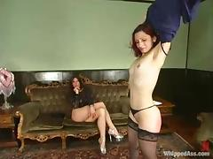 Humiliation, BDSM, Humiliation, Punishment, Slave, Spanking
