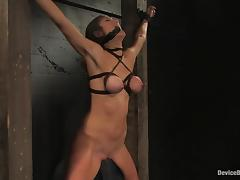 Princess Donna Dolore enjoys having massive leads on say no to awesome titties