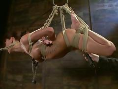 All, BDSM, Bondage, Bound, Tied Up, Hogtied