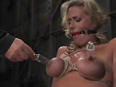 All, BDSM, Bondage, Boobs, Curvy, Slave