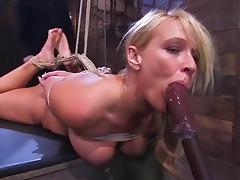 All, BDSM, Bondage, Bound, Humiliation, Slave