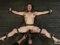 Bondage, Babe, BDSM, Big Tits, Blonde, Bondage