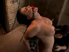 All, BDSM, Bondage, Brunette, Humiliation, Piercing