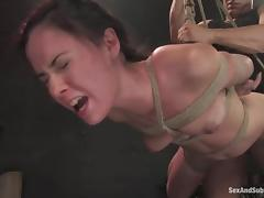 Bondage, BDSM, Bondage, Fetish, Fucking, Cage
