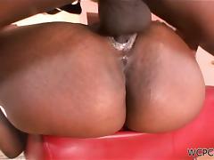 Hardcore Ebony