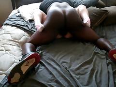 Free Big Black Cock Porn Tube Videos