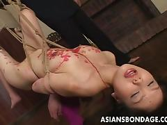 Impeccable Japanese sweety moans during raunchy bondage